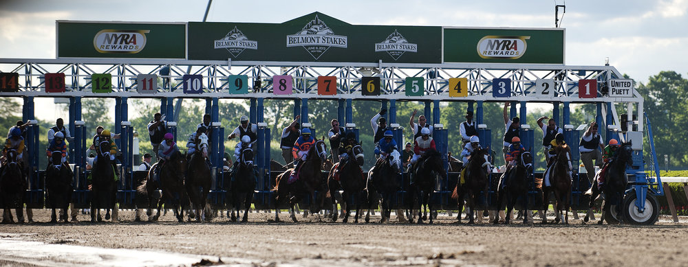The field breaks from the gate at the start of the 145th running of the Belmont Stakes, at Belmont Park in Elmont, New York on June 8, 2013.