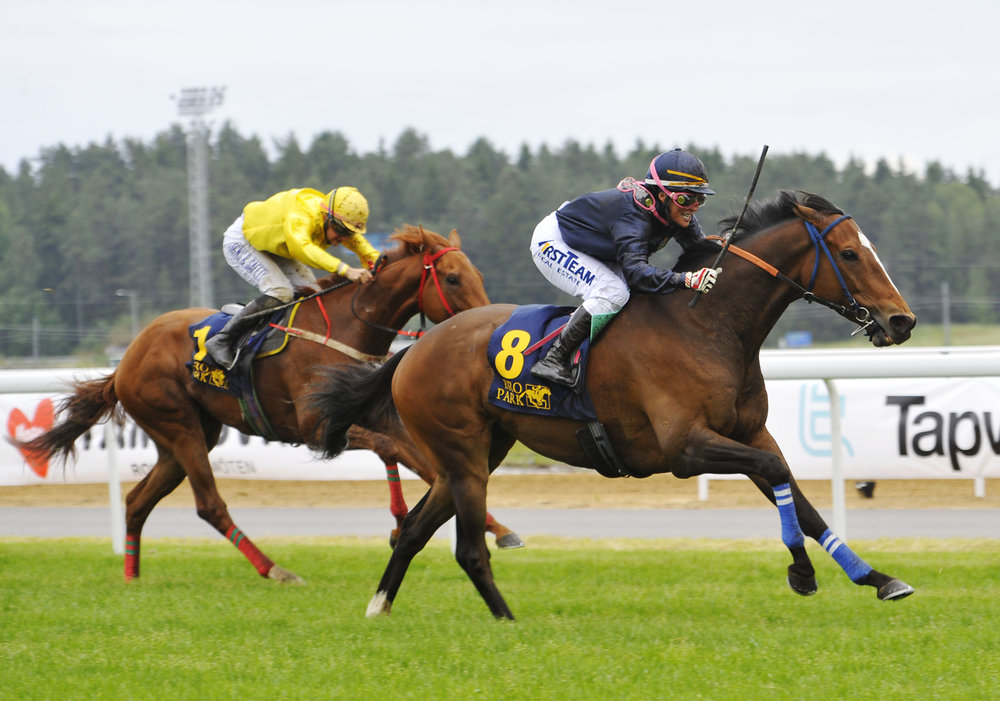 Dreams Cape Bro Park opening day. Photo Stefan Olsson Svensk Galopp.jpg