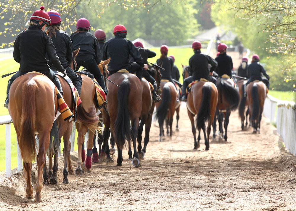 Stable staff - how do European governments classify and enforce racing's workforce?      Just over a year ago, in February 2017, the Workplace Relations Commission (WRC) served four Compliance Notices on Ballydoyle, the training establishment owned by Coolmore. Irish trainers held their breath as the result of an appeal by Ballydoyle was anxiously awaited. That appeal was rejected in January of this year and will result in major repercussions for the industry.    The WRC was established in October 2015 under the Workplace Relations Act 2015 and replaced the National Employment Rights Authority, the Labour Relations Commission, and the Director of the Equality Tribunal. During an inspection of Ballydoyle in May 2016, WRC inspectors identified breaches of the Organisation of Working Time Act, involving failure to provide sufficient breaks and rest periods for five grooms and exercise riders.    This situation arose from what many would argue to be the unnecessary February 2015 Irish Amendment of the 1976 Industrial Relations Act, which was amended to exclude the rearing and training of racehorses from being recognised as agricultural labour. Interestingly, stud farms and their staff are not affected by this ruling, as horse breeding is still considered to be an agricultural activity.    The amendment made was not required by European law, but individual nation states are free to make such exemptions within their own legal system as they deem necessary. Therefore, since February 2015, Irish racehorse training yards do not qualify for the same working hours exemptions that have been agreed in agricultural workplaces, as defined by industrial relations law.    The 2015 Amendment was not widely publicised and escaped the attention of most trainers, but the WRC targets two industries each year for inspections, and the equine industry was among those specifically targeted for 2017, with around 60 inspections carried out.    Why Ireland's racing staff are not agricultural wo