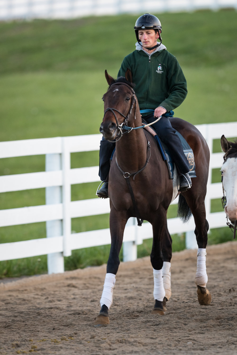 Quip is ponied back from the track at Keeneland 4.18.18.