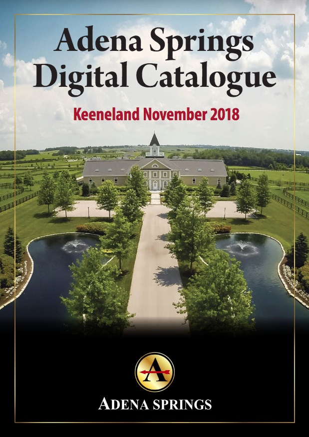 Adena Springs - Keeneland November 2018 -