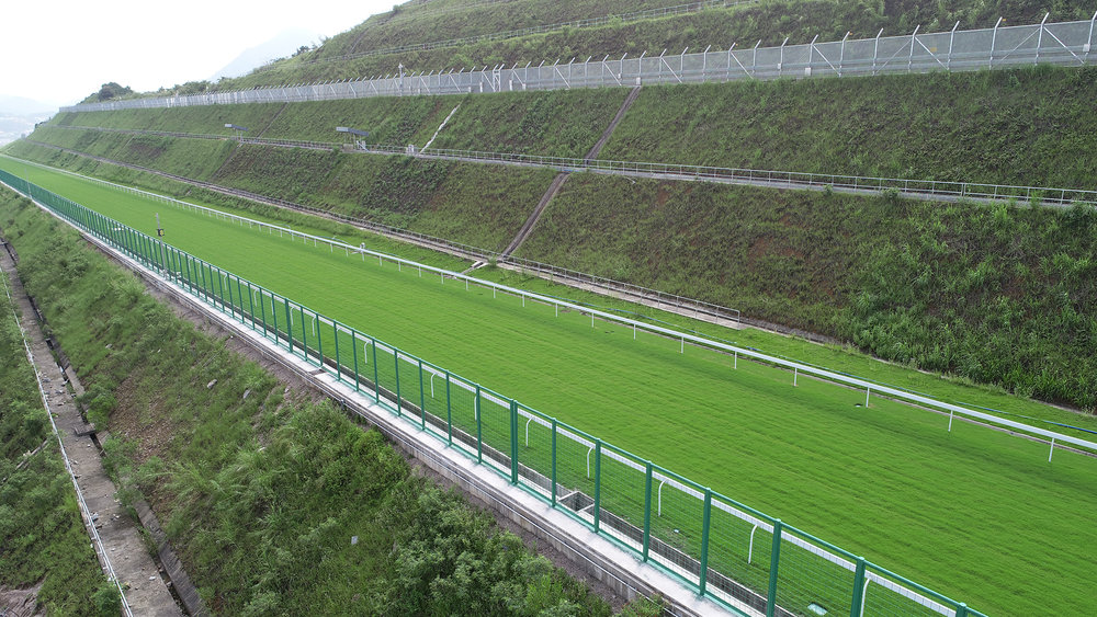 The 1,100m uphill gallop is the first of its kind for the Hong Kong horse population.