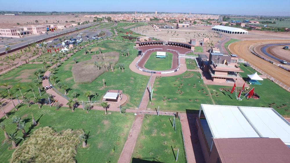 Marrakech racecourse; international standard racing for Morocco's 'city of entertainment'.
