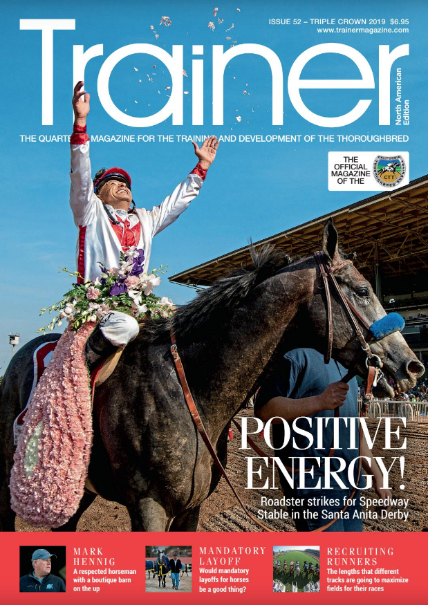 BUY THIS ISSUE IN PRINT OR DOWNLOAD —  Spring 2019, issue 51  $6.95