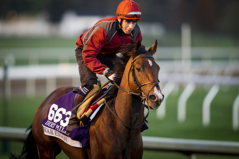 October 29, 2015:   War Envoy, trained by Aidan P. O'Brien and owned by Mrs. John Magnier, Michael Tabor, Derrick Smith & Joseph Allen LLC, exercises in preparation for the Breeders' Cup Mile at Keeneland Race Track in Lexington, Kentucky. Alex Evers/ESW/CSM