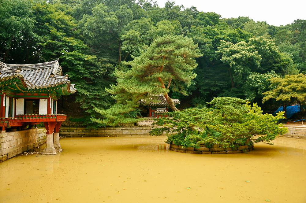 korea-20.jpg