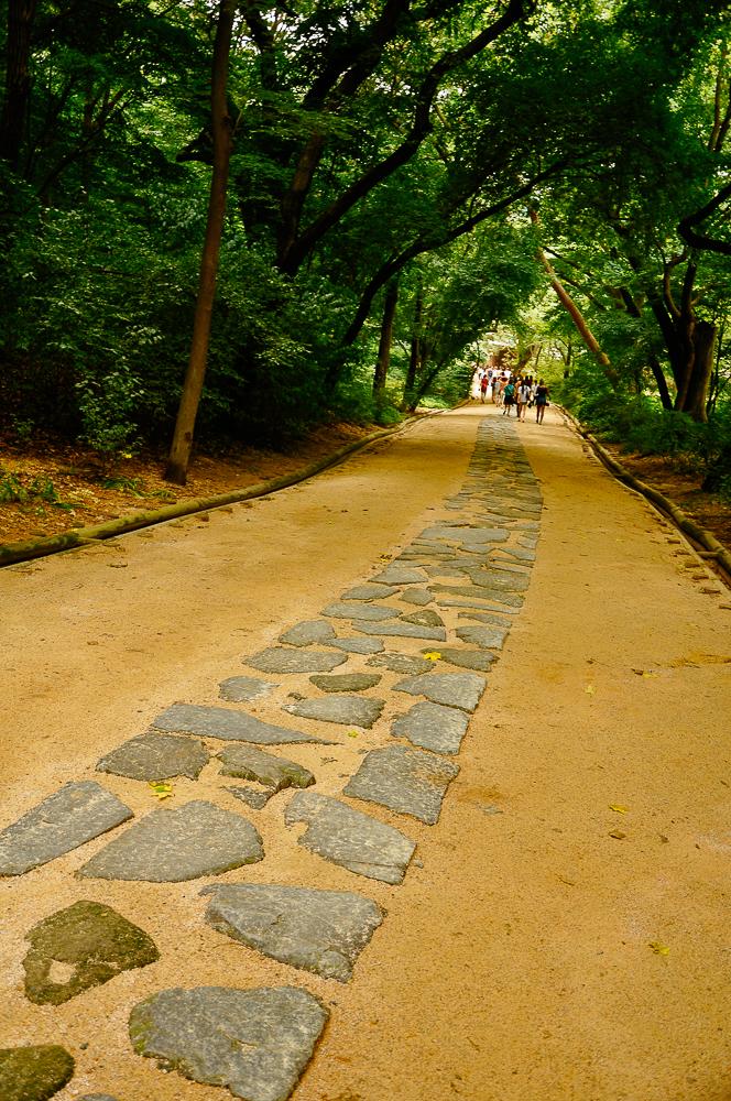 korea-23.jpg