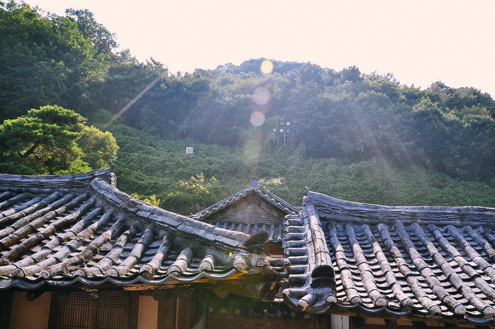 korea-82.jpg