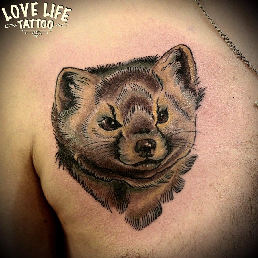 татуировка соболя