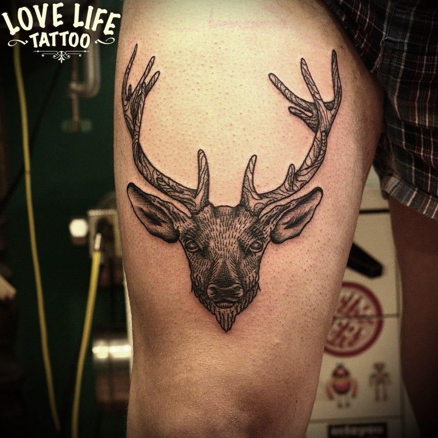 татуировка оленя