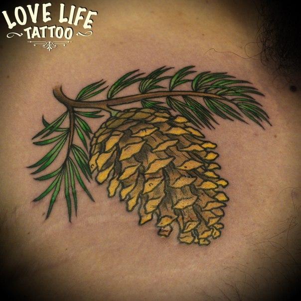татуировка шишки
