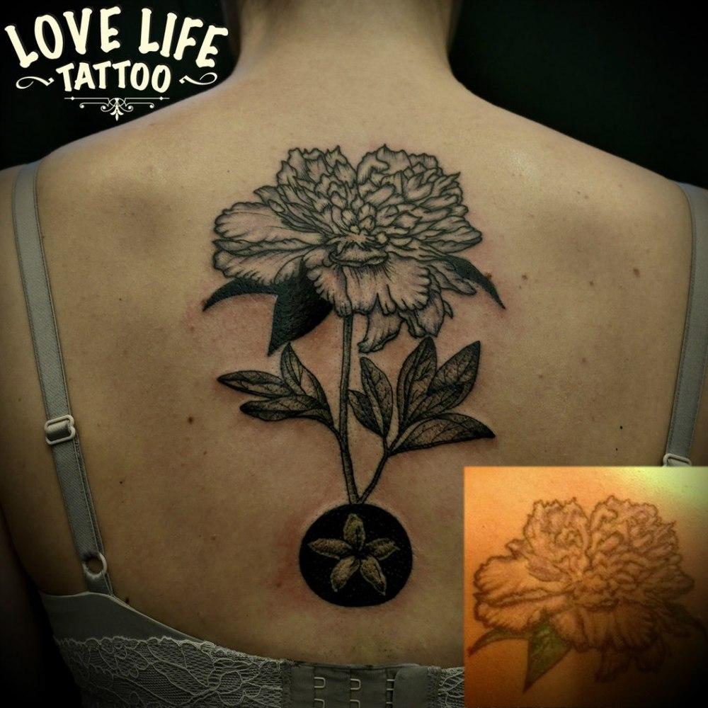 татуировка пиона (перекрытие)
