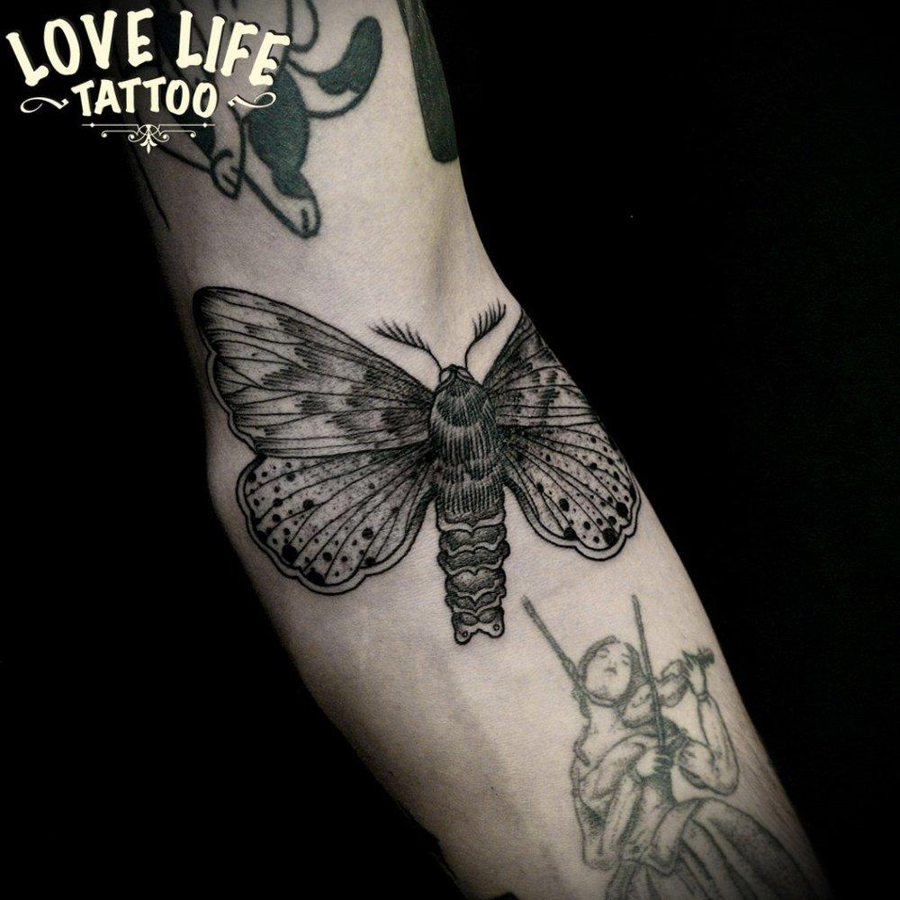 татуировка мотылька