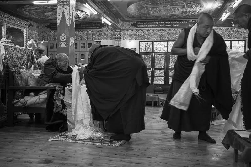 Monks of Rato and other monasteries then offer white khatas as a sign of the purity of their thoughts toward Rinpoche