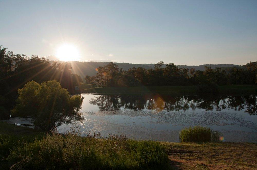 Pond 2 - Molka.jpg