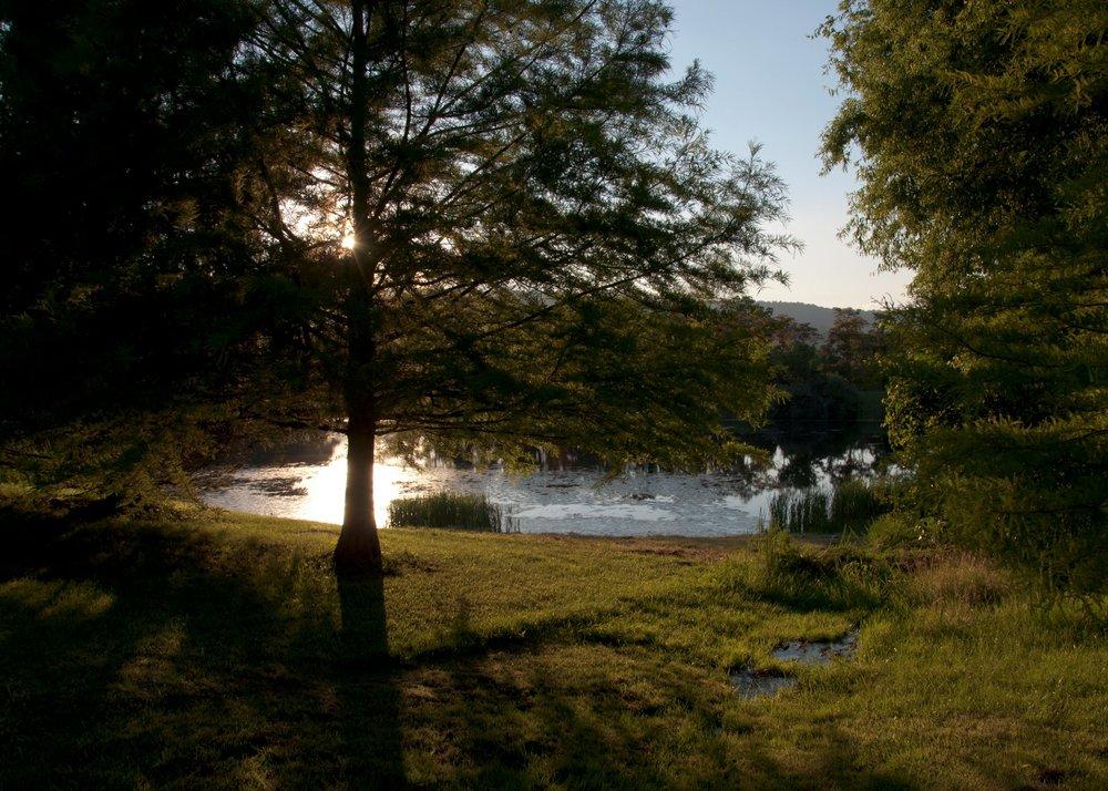 Pond 3 - Molka.jpg