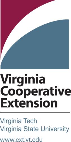 VCE-V2Clr.jpg