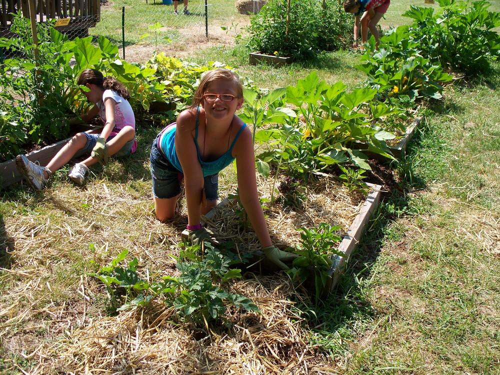 garden june 2012 004.jpg