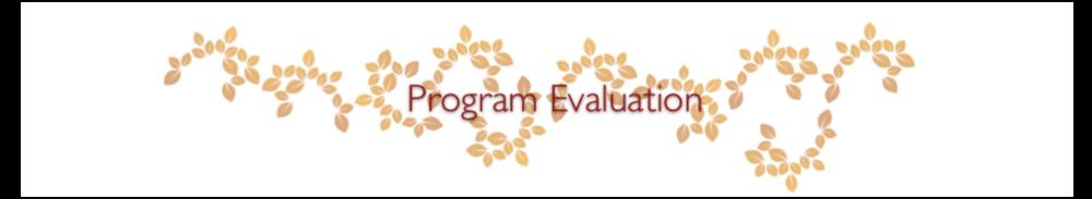 Program Evaluation.png