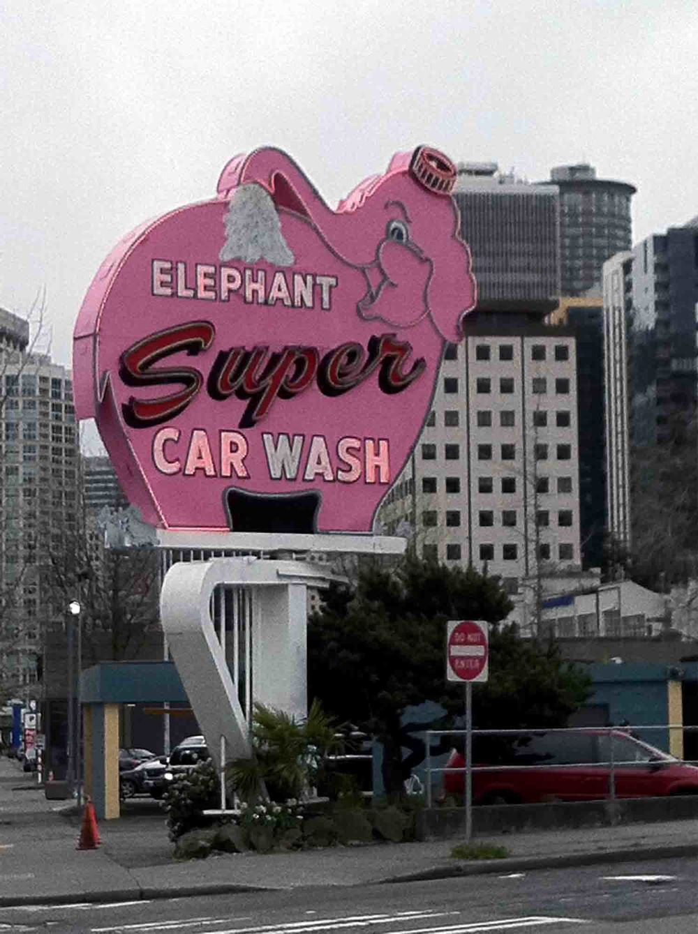 Elephant carwash copy.jpg