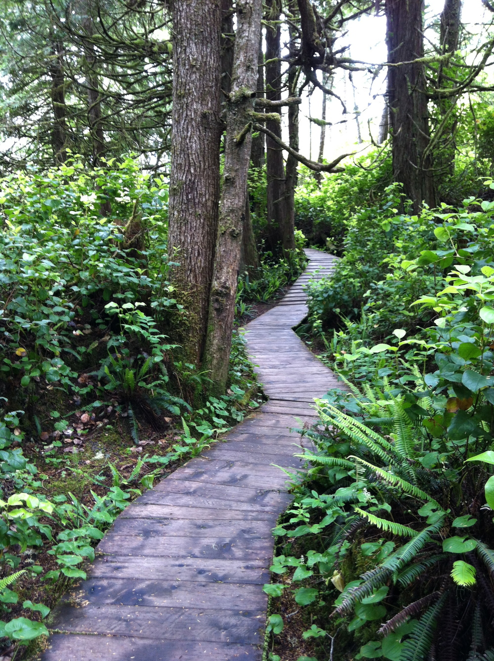 Boardwalk through the rainforest at Pacific Sands Resort on Cox Bay near Tofino BC