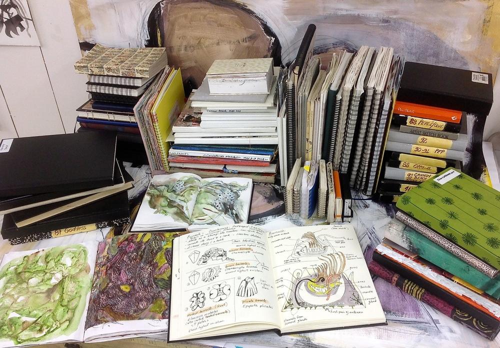 Sketch Book Development - Jill Ehlert