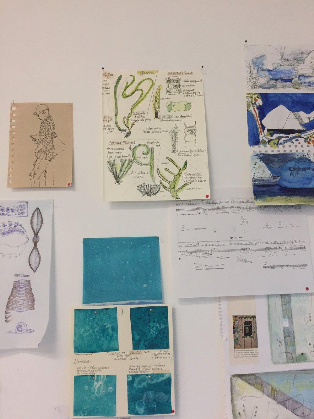 Jill Ehlert - plankton studies