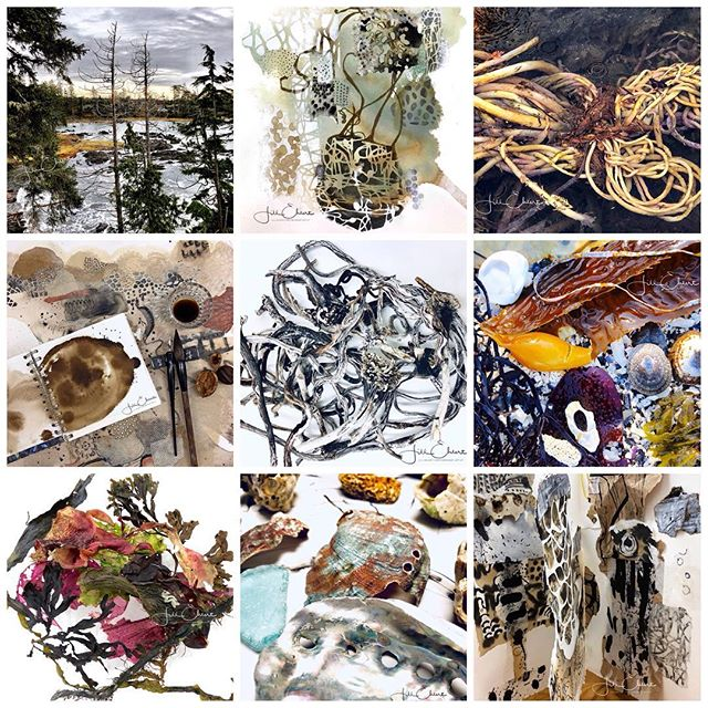 My favourite Nine. #seaside #seaweed #seashells #mixedmedia #ucluelet #mixedmediaart #artistbooks #inspiration #collageartist #mixedmediaartist #mixedmediacollageartist #mixedmediacollage #walnutink #makeink