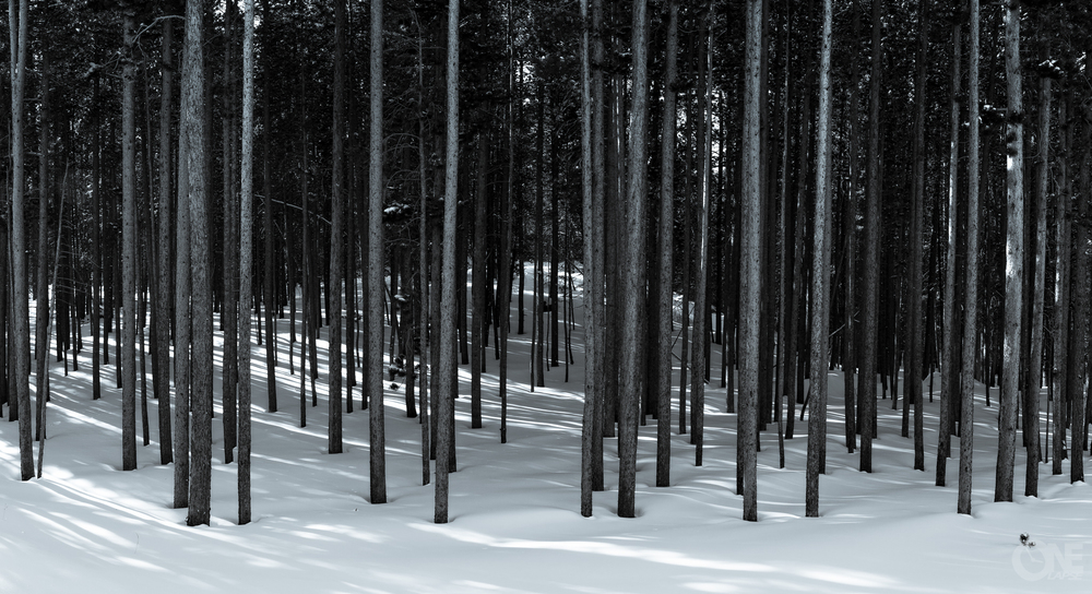 untitled_ONElapse2012Dec_0567-Pano-Edit.jpg