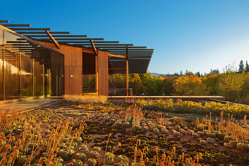 packard foundation2nd.jpg