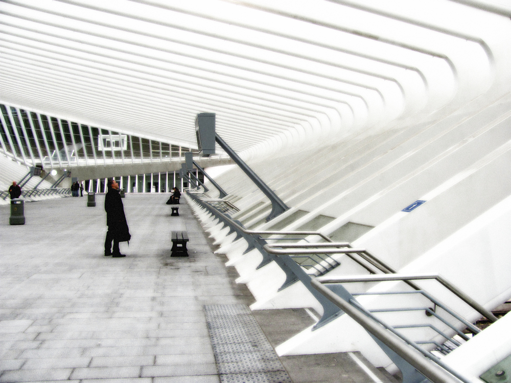 Platform Cross Over Gallery, Grand Hall, Liege, VHS 2010