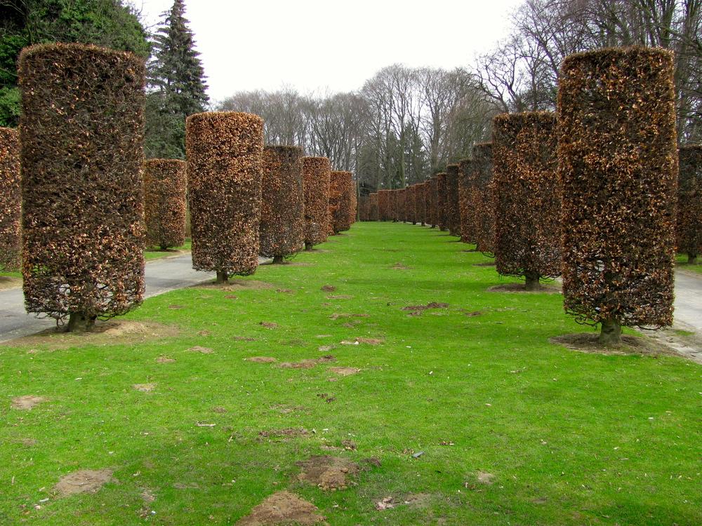 Parc d'Osseghem Ossegemparc, Brussels, Belgium, VHS 2010