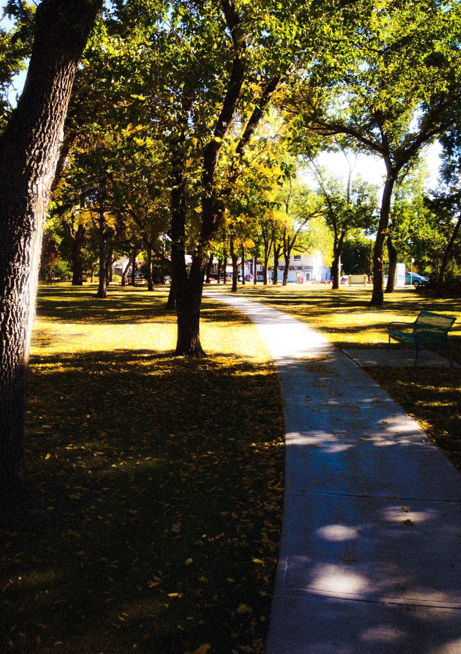 The Not Straight Path, Borden Park, Edmonton, Alberta, VHS 2014