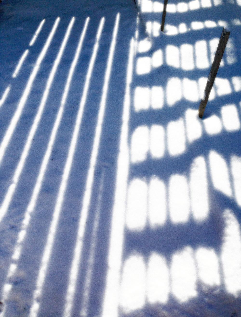Winter Garden,VHS 2014,posted December 16,wk 25