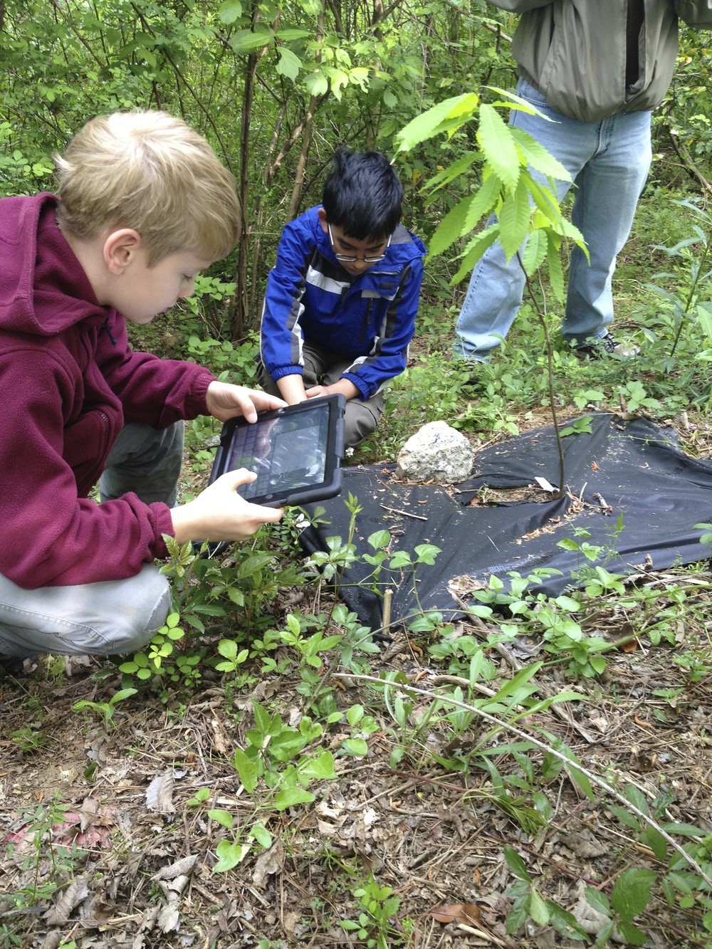 Scouts use GPS to assign locations to newly planted saplings on the trail