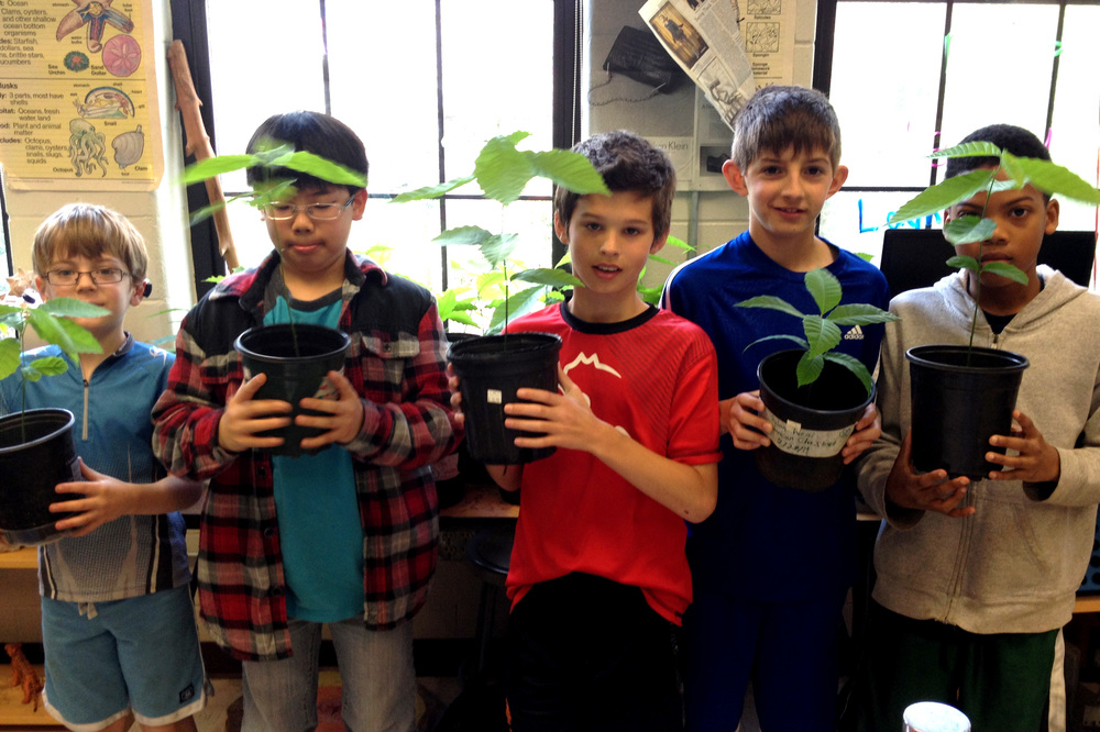 5th graders at Morningside Elementary proud of their thriving saplings.