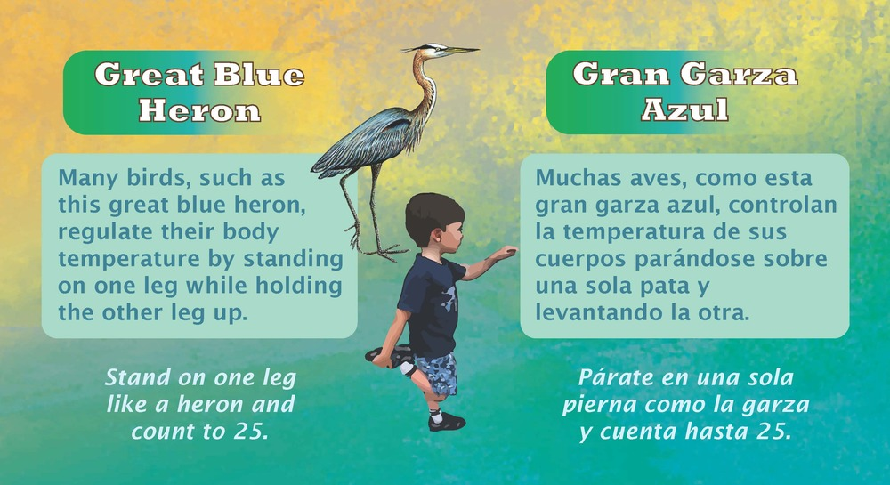 Bilingual signs teach children about local wildlife while encouraging them to be active and enjoy the outdoors. Some of our founders and partners show us how it's done!