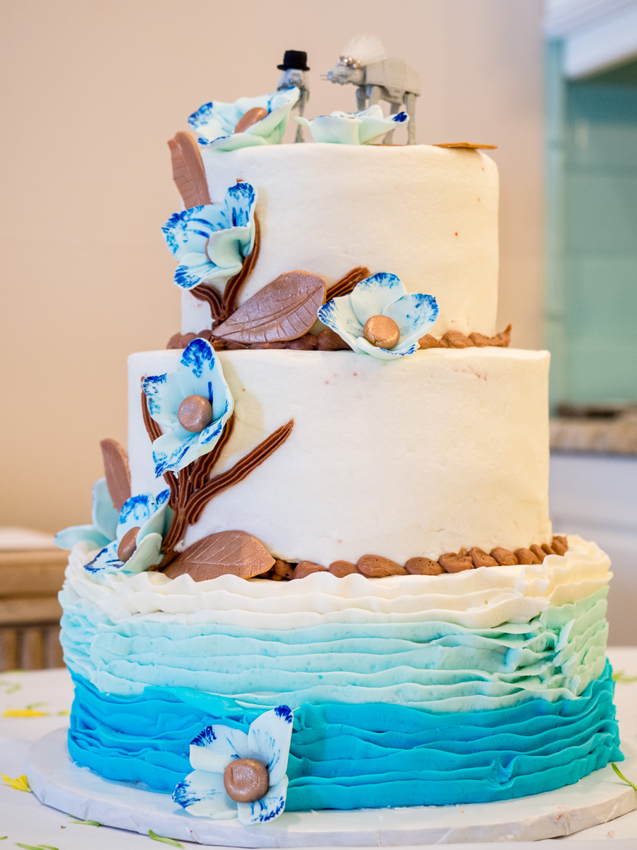 Gulf-Shores-Wedding-Cake-2015-322.jpg
