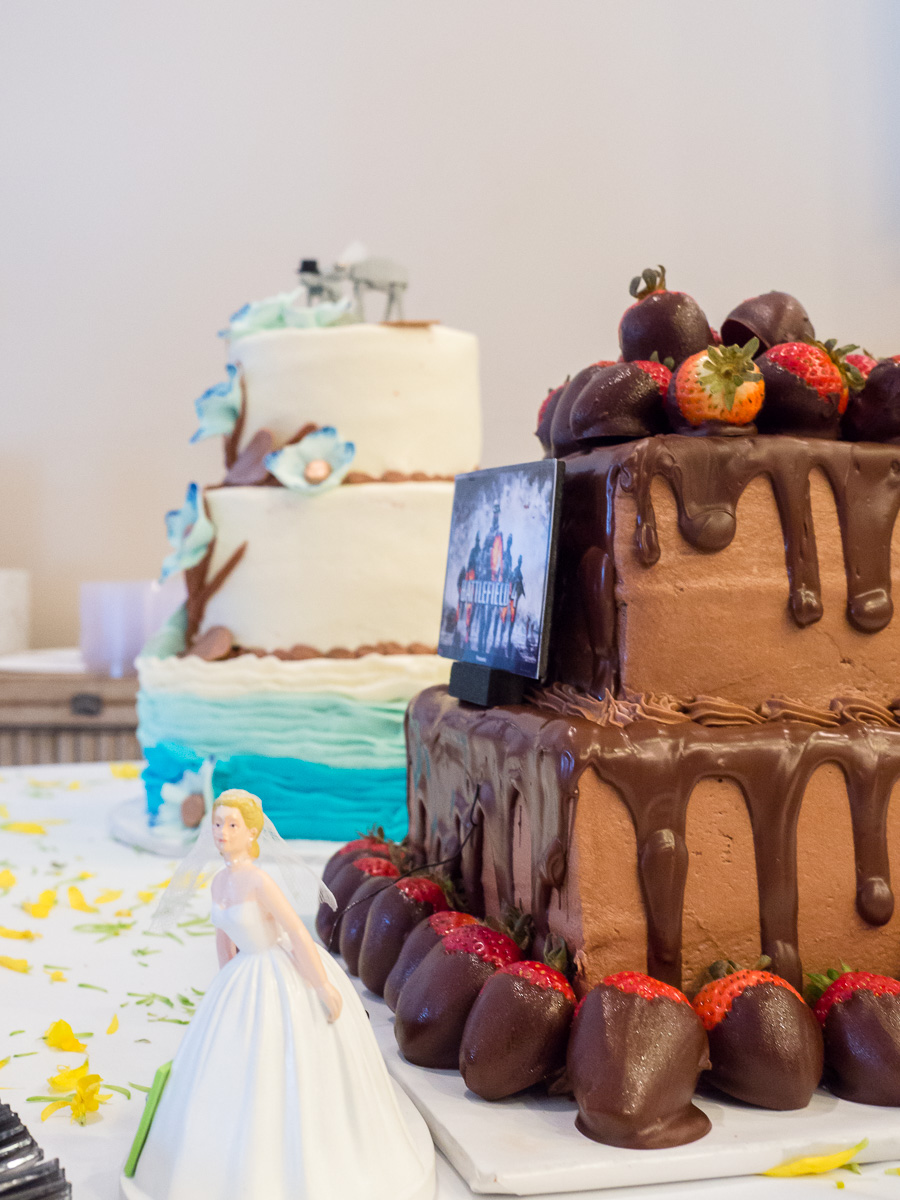Gulf-Shores-Wedding-Cake-2015-323.jpg