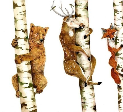 bookspaperscissors :      Bear Deer Fox Trees illustration Print 8x11 by ChasingtheCrayon