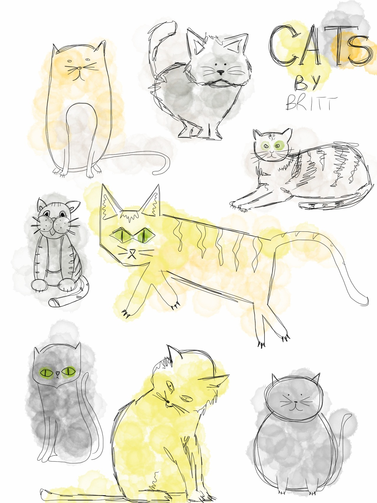A study of cats for a secret project..
