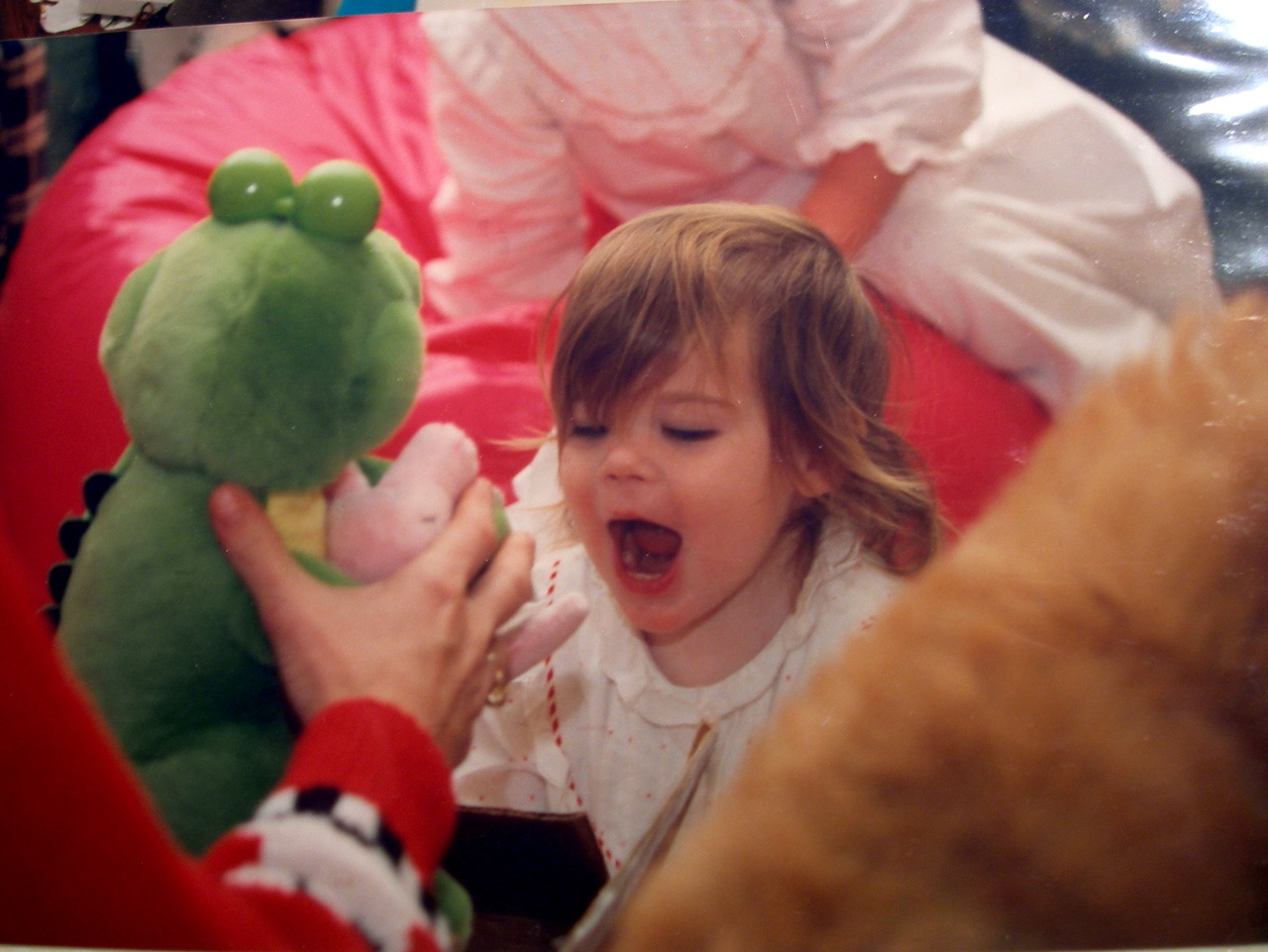 i wish a stuffed crocodile was still this exciting.