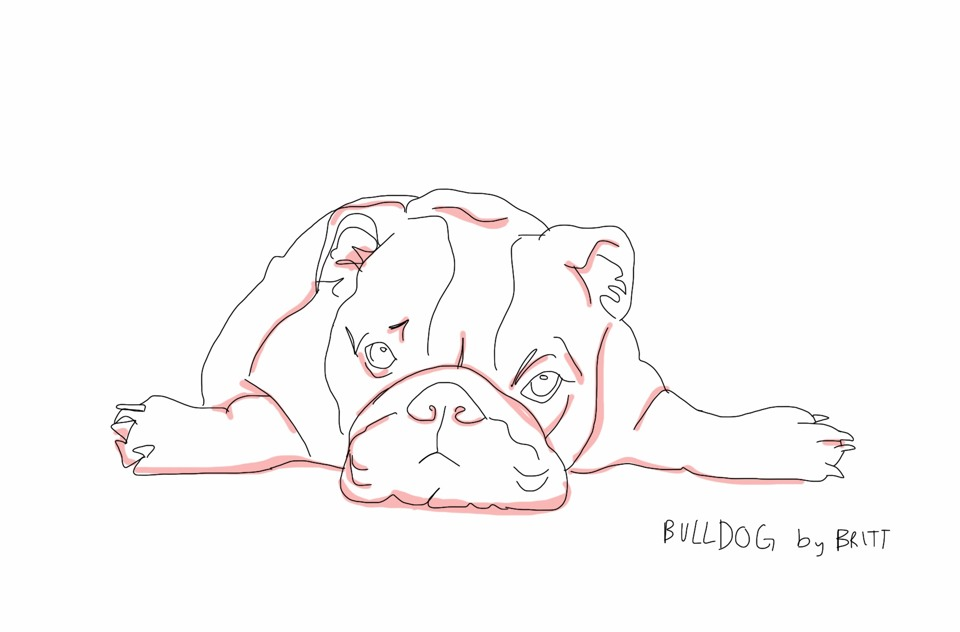 This is my brain right now, a bulldog. Not even in color! Stupid pink shading!