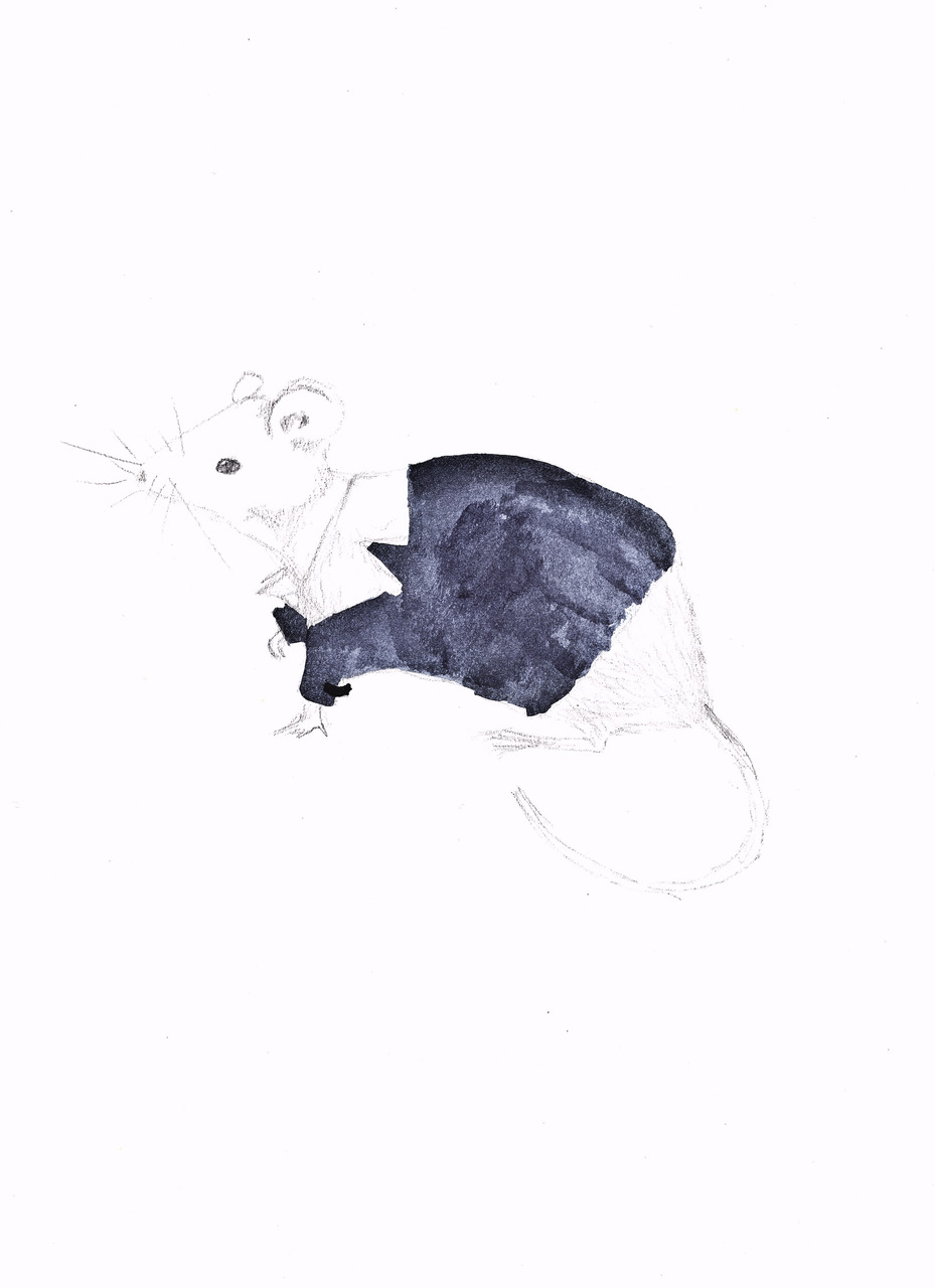 animals wearing urban outfitters: mouse