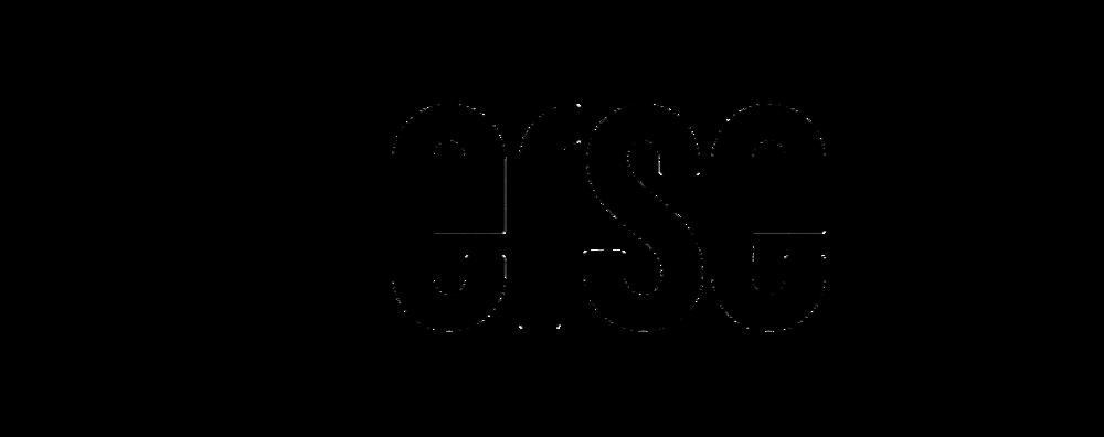 Verse Logo_Horizontal_Wide.png