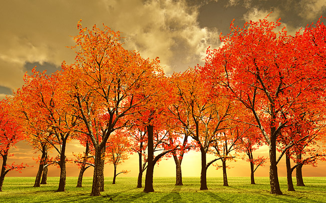 bigstockphoto_Beautiful_Autumn_3316769_web