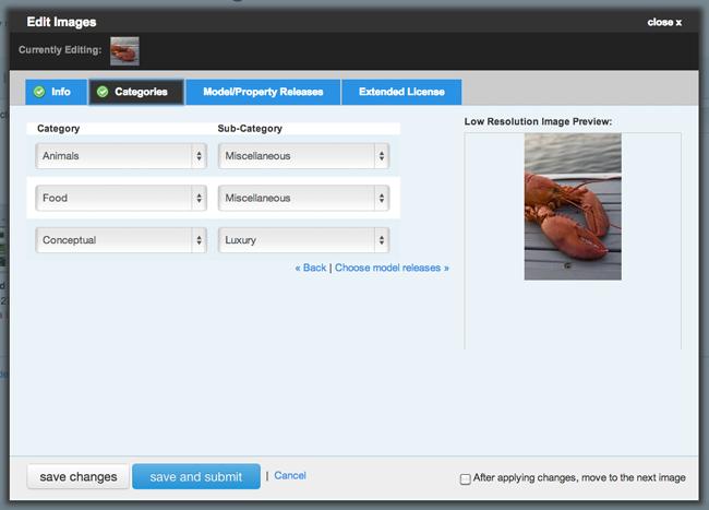screen shot of categories meta data page