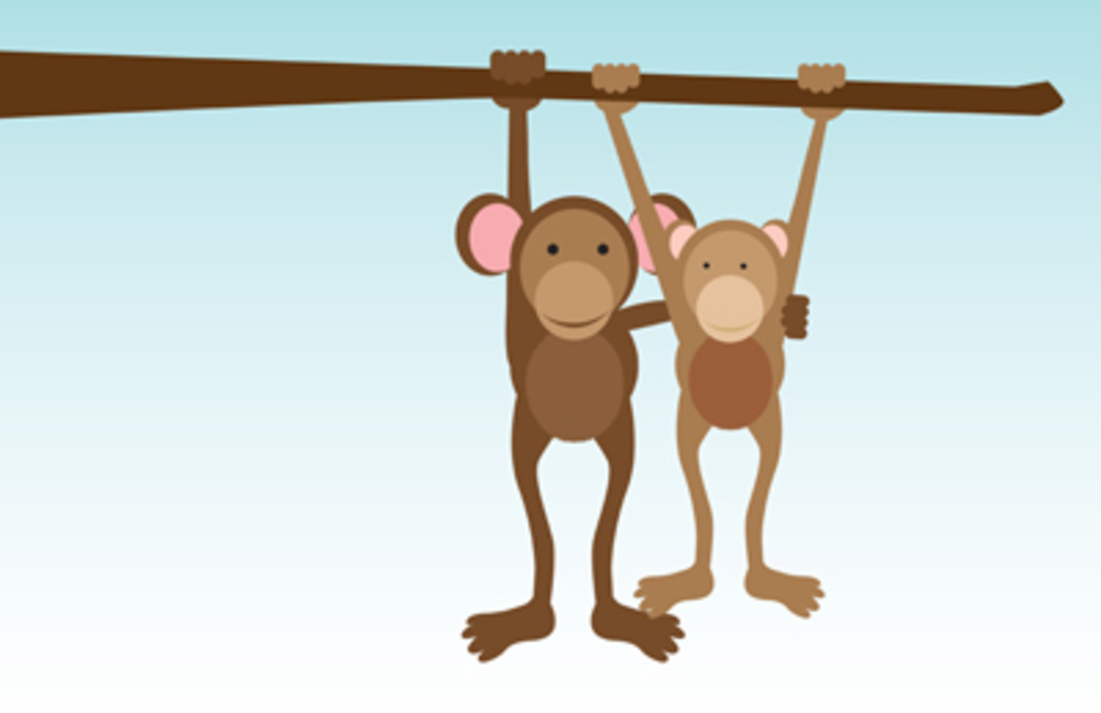 """  Monkeys Hanging Around image ©barney boogles"