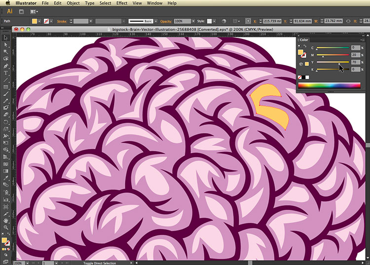 color palette. Intro to working with vectors. Bigstock