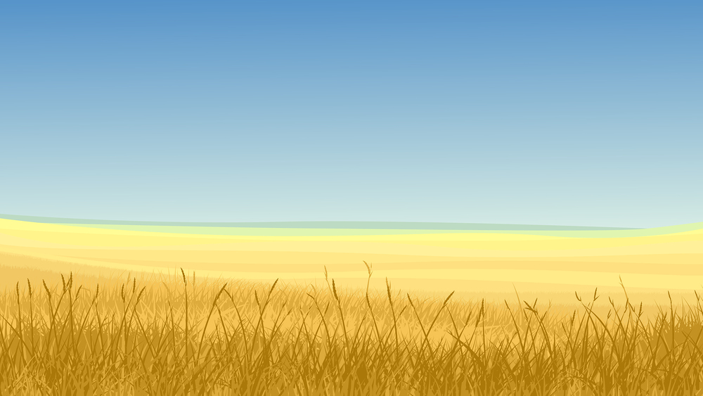 Field of Yellow Grass image ©Vertyr